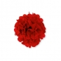 Papier Pompon DIY, Farbe: rot