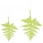 "Papier-Deko "" Farn"", Farbe: green"