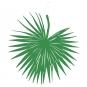 "Papier-Deko "" Palmblatt"", Farbe: grün"