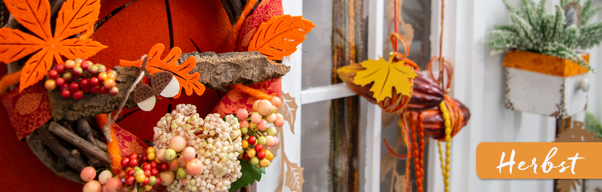 Startseitenbanner-Herbst